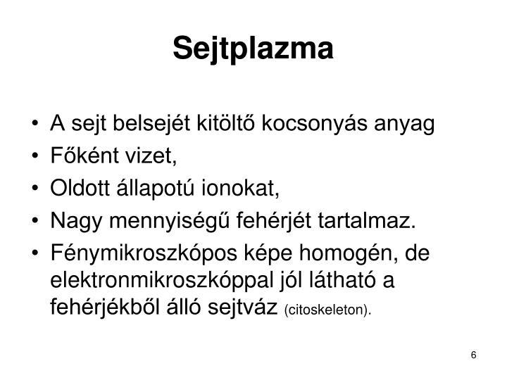 Sejtplazma