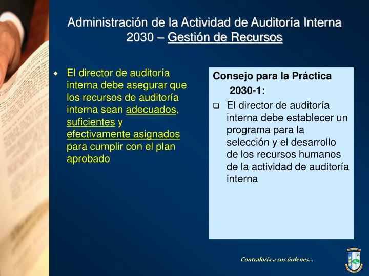 El director de auditoría interna debe asegurar que los recursos de auditoría interna sean