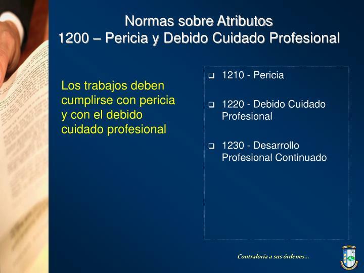 1210 - Pericia