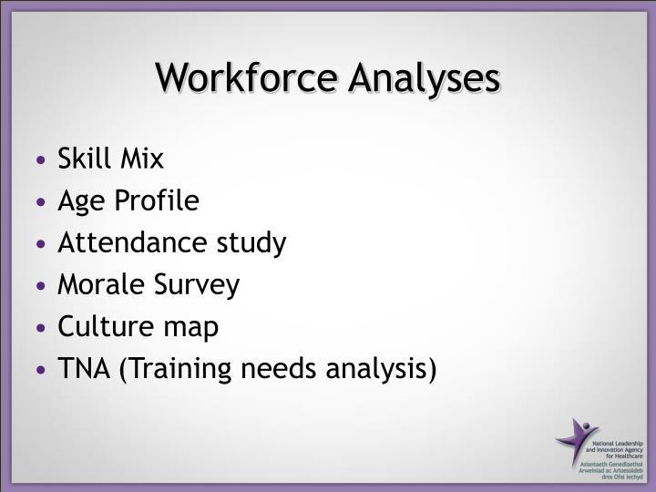 Workforce Analyses