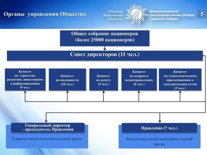 Органы  управления Общества