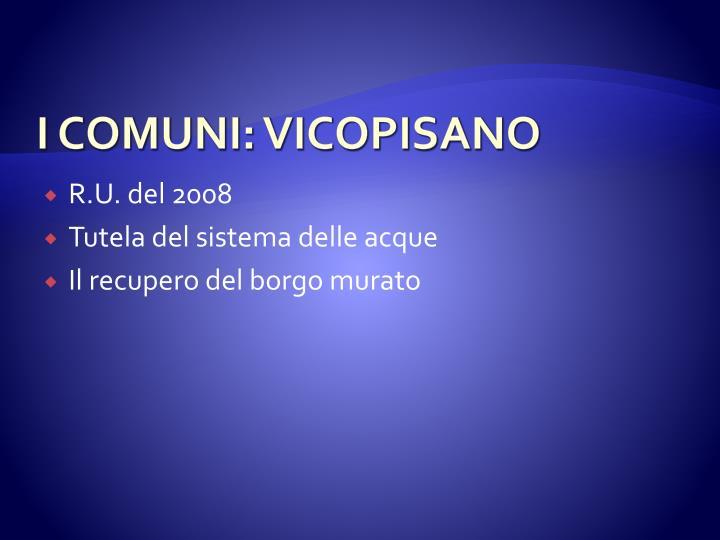I COMUNI: VICOPISANO