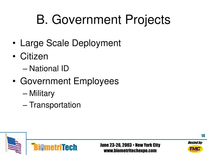 B. Government Projects