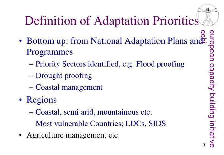 Definition of Adaptation Priorities