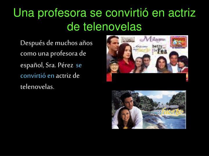Una profesora se convirtió en actriz de telenovelas