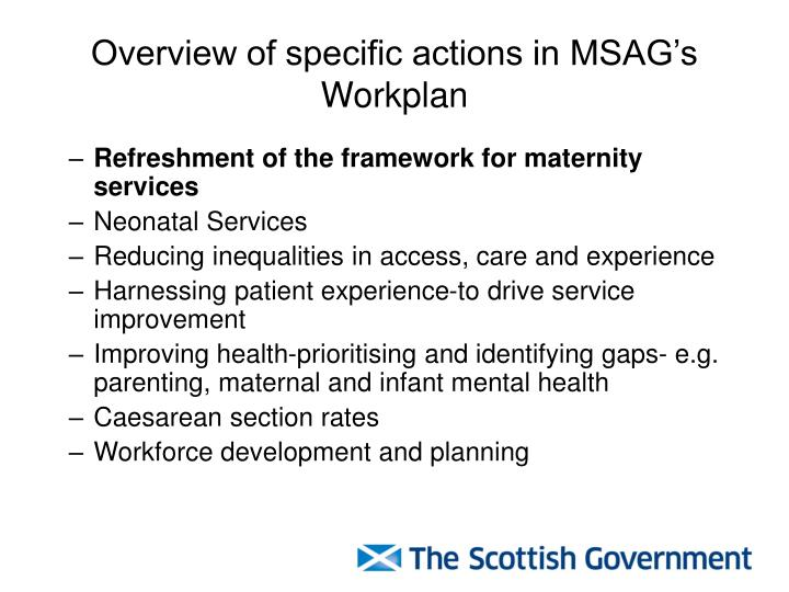 Overview of specific actions in MSAG's Workplan