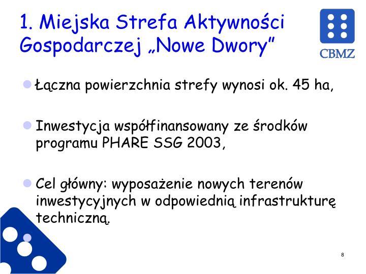 """1. Miejska Strefa Aktywności Gospodarczej """"Nowe Dwory"""""""