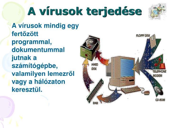 A vírusok terjedése