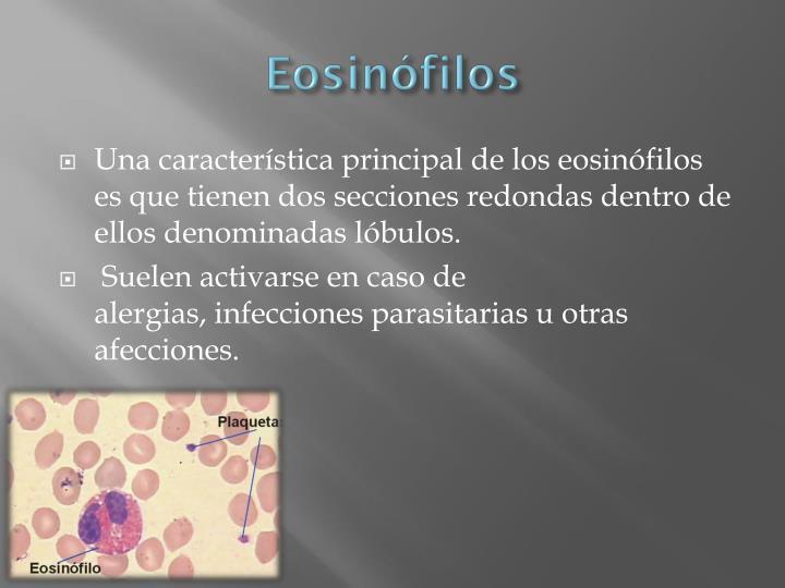 Eosinófilos