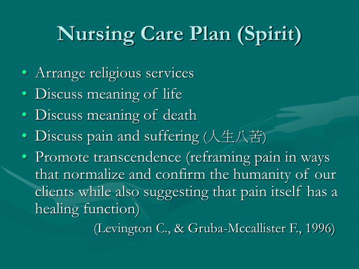 Nursing Care Plan (Spirit)