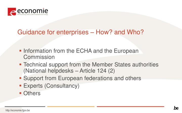 Guidance for enterprises – How? and Who?