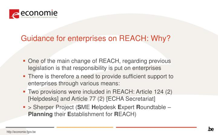 Guidance for enterprises on REACH: Why?