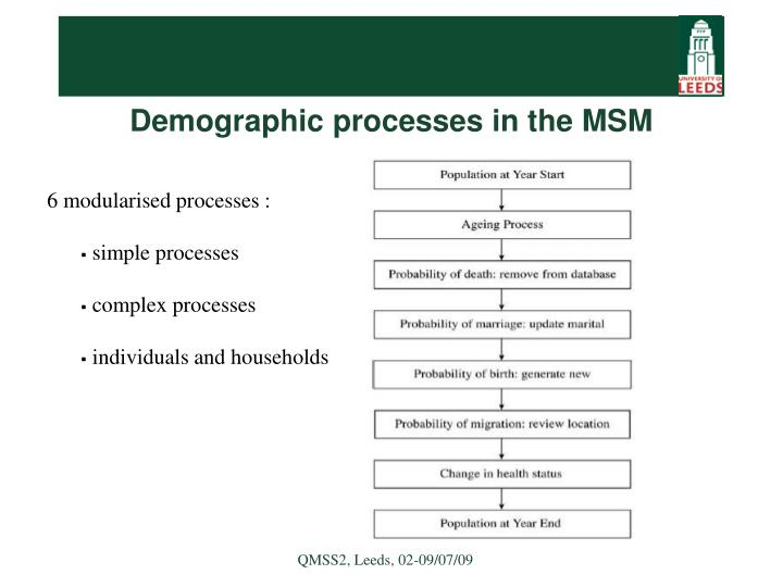 Demographic processes in the MSM