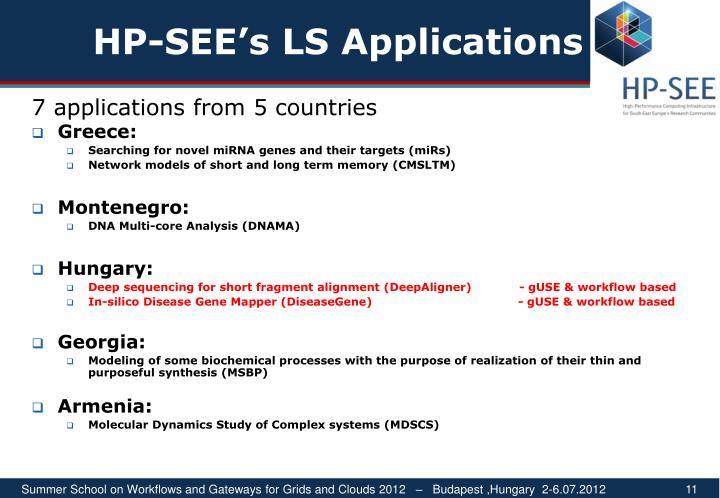 HP-SEE's LS Applications