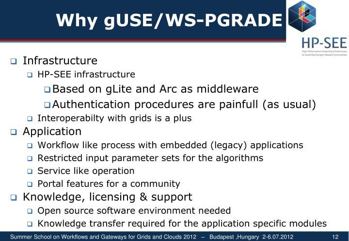 Why gUSE/WS-PG