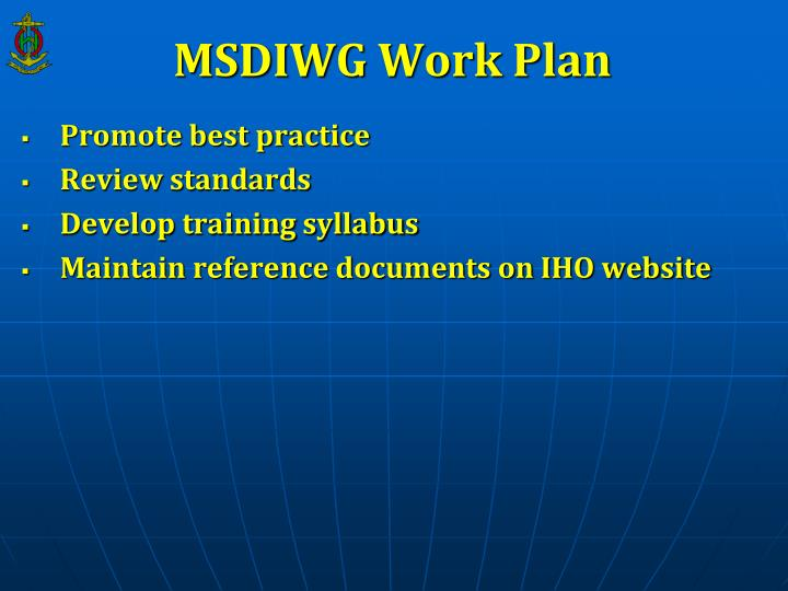 MSDIWG Work Plan