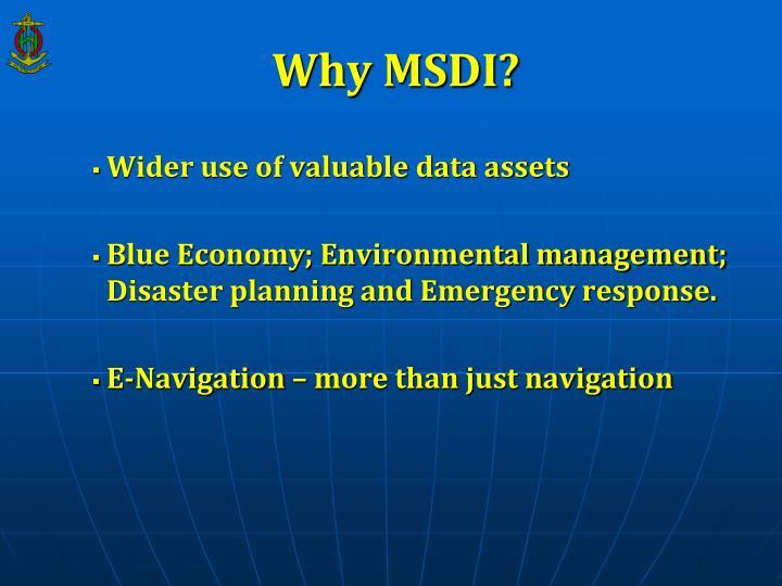 Why MSDI?