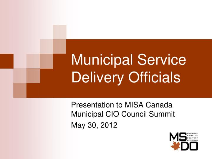 Municipal service delivery officials