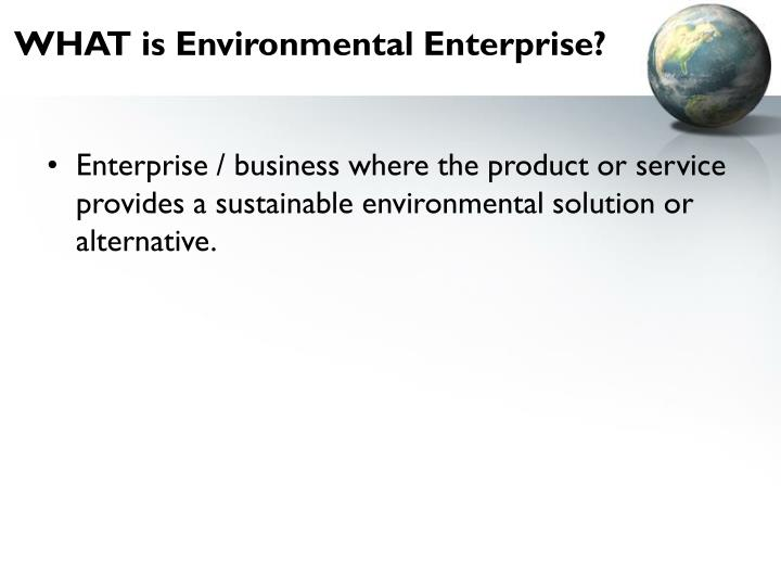 WHAT is Environmental Enterprise?