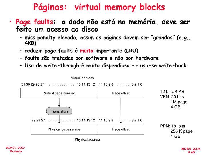 Páginas:  virtual memory blocks