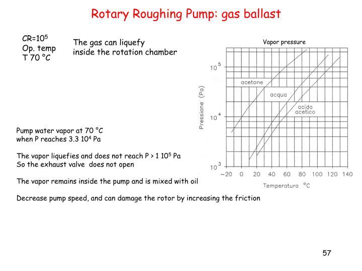 Rotary Roughing Pump: gas ballast