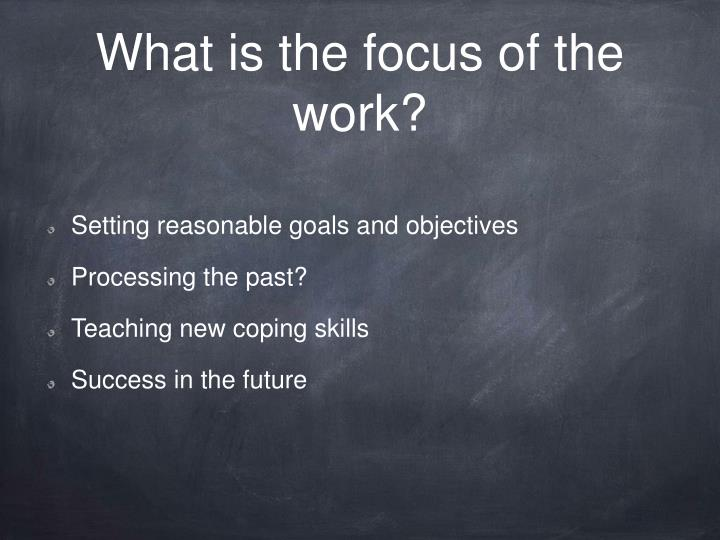 What is the focus of the work?
