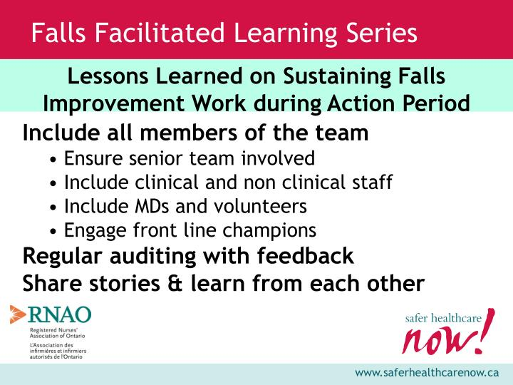 Lessons Learned on Sustaining Falls Improvement Work during Action Period