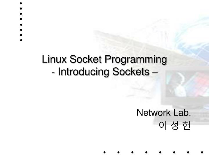 Linux socket programming introducing sockets
