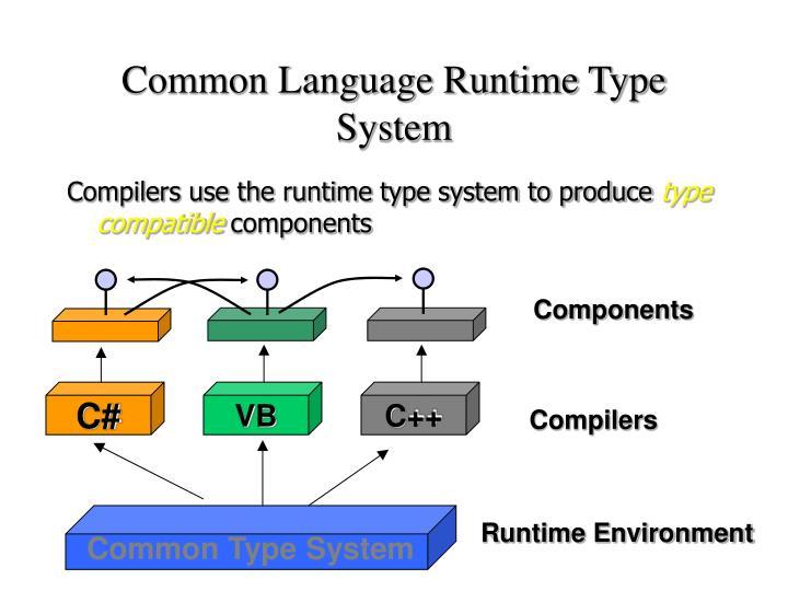 Common Language Runtime Type System