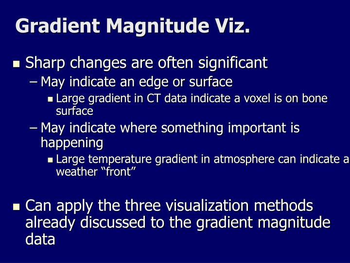 Gradient Magnitude Viz.
