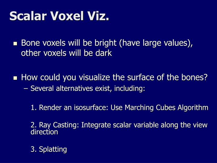 Scalar Voxel Viz.