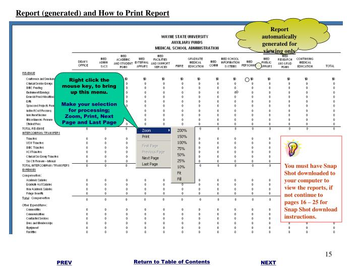 Report (generated) and How to Print Report