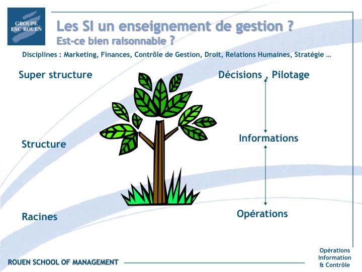 Les SI un enseignement de gestion ?