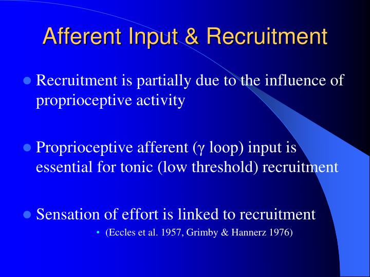 Afferent Input & Recruitment