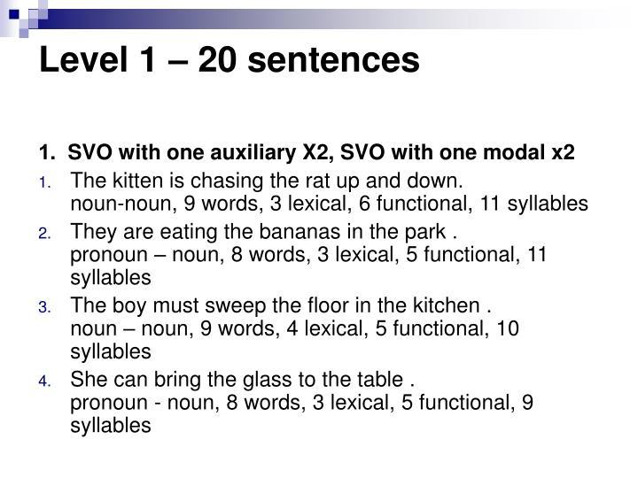 Level 1 – 20 sentences