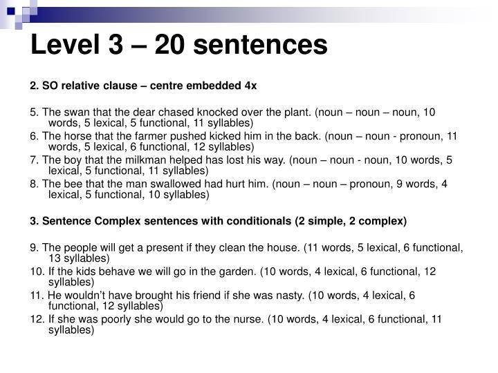 Level 3 – 20 sentences