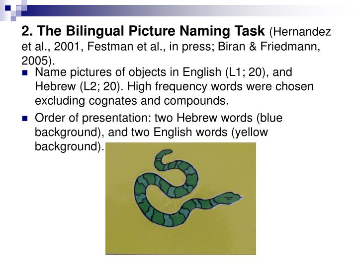 2. The Bilingual Picture Naming Task