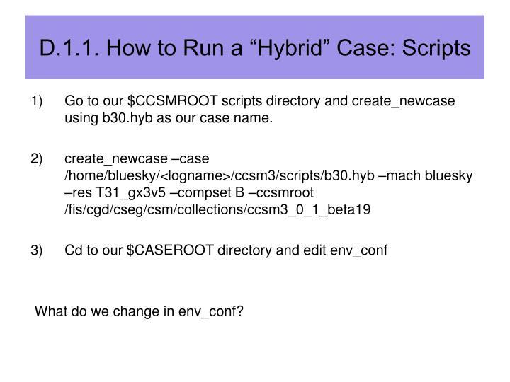 "D.1.1. How to Run a ""Hybrid"" Case: Scripts"