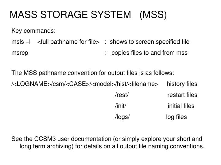 MASS STORAGE SYSTEM   (MSS)