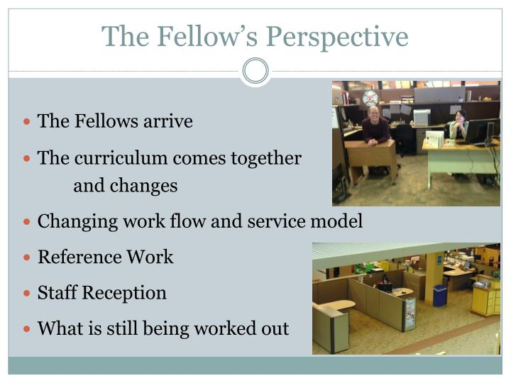 The Fellow's Perspective