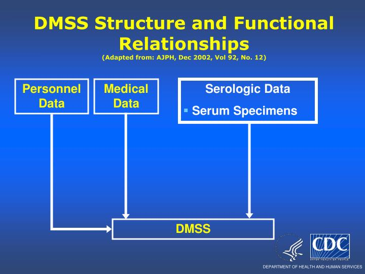 DMSS Structure and Functional Relationships