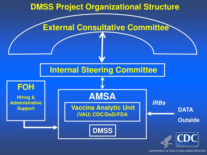 DMSS Project Organizational Structure