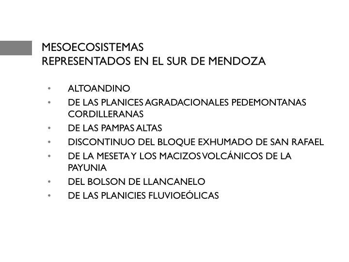 MESOECOSISTEMAS