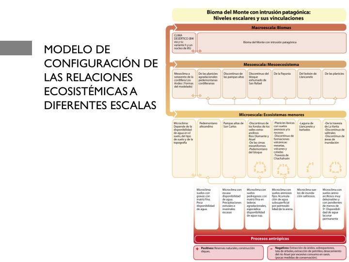 MODELO DE CONFIGURACIÓN DE LAS RELACIONES ECOSISTÉMICAS A DIFERENTES ESCALAS