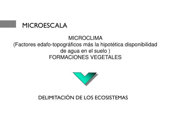 MICROESCALA