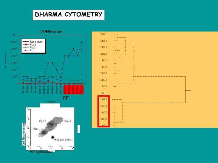 DHARMA CYTOMETRY