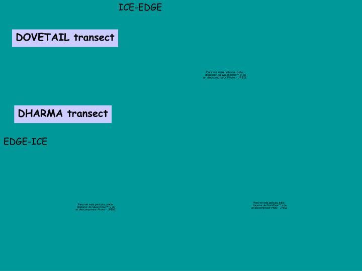 ICE-EDGE