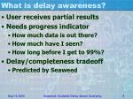 what is delay awareness