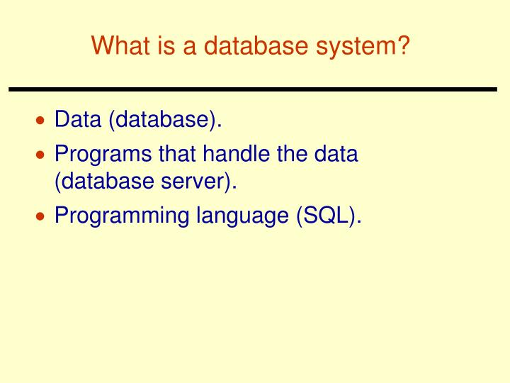 What is a database system