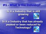 1 what is the industry